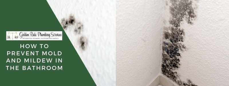 How to Prevent Mold and Mildew in the Bathroom